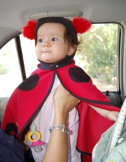 ladybug niece